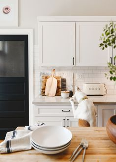 Catfish tries to nab food off the kitchen counter | all-white kitchen | via Yellow Brick Home Kitchen Dining, Kitchen Cabinets, Dining Room, Parmesan Recipes, Clearance Rugs, Rugs Usa, Easy Weeknight Dinners, How To Squeeze Lemons, Months In A Year