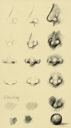 Nose reference by ryky, Apr 14, 2014 in Resources & Stock Images > Tutorials > Other