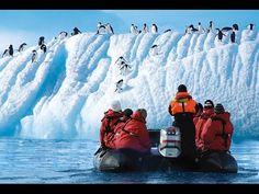 Antarctica - The Final Frontier (MV Ushuaia) - HD - - YouTube