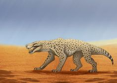 A gorgonopsid i've been working on the last few days! These guys existed before dinosaurs, during the late Permian. Read more about them here: en.wikipedia.org/wiki/Gorgonop… It's not quite ...