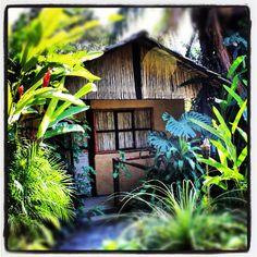 Buenos días a todos feliz miércoles de #aventura en #Jalcomulco Descansa unos  días en las #cabañas tipo #ecoturisticas http://www.riopescados.mx #Veracruz