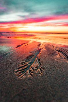 lsleofskye:  Seal Beach California