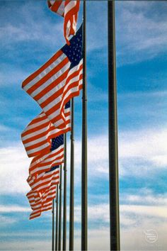 half staff flag dates
