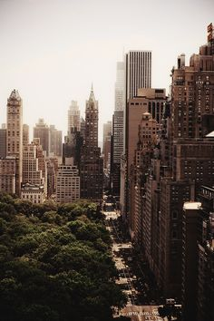 New York City / photo by Grey van der Meer