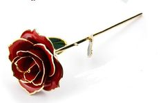 Long Stem Dipped 24k Gold Trim Red Ro... for only $36.97