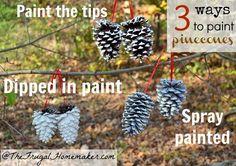 3 ways to paint pinecones and how to make into hanging ornament @Nicole Novembrino Novembrino Novembrino Novembrino Novembrino Hansen