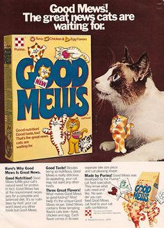 One of the foods I used to buy for my kitties...waaay back  before I knew what 'animal proteins' & 'chicken meal' really meant in the ingredients. :)    1979 Ralston Good Mews Cat Food Magazine Ad by gregg_koenig, via Flickr