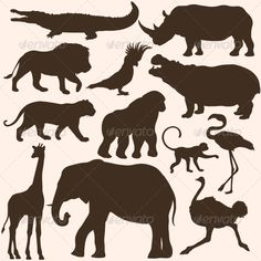Vector Set of Tropical Animals Silhouettes file types: jpg, eps Created: GraphicsFilesIncluded: JPGImage Layered: No MinimumAdobeCSVersion: CS Tags: animals Animal Templates, Tropical Animals, Animal Silhouette, Shadow Puppets, Art Courses, Circus Theme, Cartoon Pics, Stuffed Animal Patterns, Art Classroom