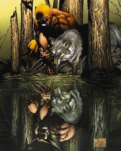 The Wolverine Movie – The Lost Boy Art by: Joe Quesada The Wolverine Movie is set to premiere next week in the US! The Movie is based off of the Frank Miller miniseries from the Get your Fandango Tickets for The Wolverine Movie here 스타카지노 Marvel Wolverine, Marvel Comics, Marvel Dc, Wolverine Origins, Wolverine Movie, Arte Dc Comics, Logan Wolverine, Bd Comics, Marvel Heroes