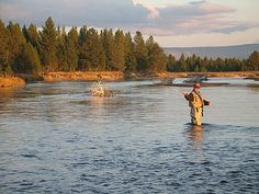 Fly Fishing On the Mighty Madison by Roche Photo, via Flickr