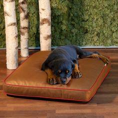 LOUNGE Eddy orthopedic dog bed // pet interiors