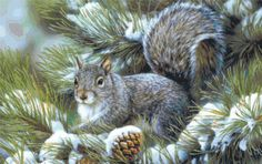 Squirrel in Wintry Landscape  Nature  Counted by StoneyKnobFarm