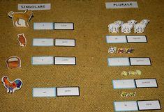 Psicogrammatica Montessori: il plurale degli articoli – Lapappadolce Montessori, Language Arts, Language
