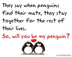 We have penguin love.always and forever Honey! Penguin Quotes, Penguin Life, Penguin Art, Cute Love, Love Him, My Love, Pinguin Illustration, Penguin Pictures, Cute Couple Cartoon