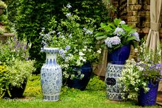 Gorgeous blue containers