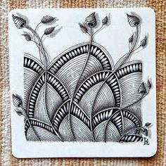 Lily's Tangles: May 2015