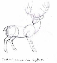 Как нарисовать оленя карандашом поэтапно 3