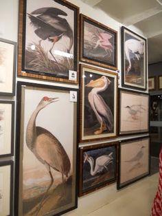 Love Audubon