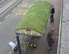Go green! The living vegetation installed on this bus shelter in Yorkshire helps filter pollution and particulates from transport exhausts to protect the health of waiting passengers.