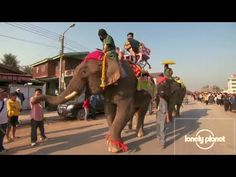 50,000 people flock to Laos for the country's famous Elephant Festival