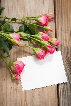 Pink roses Graphics White card and pink roses on a wooden background by Flower Background Wallpaper, Beautiful Flowers Wallpapers, Flower Phone Wallpaper, Rose Wallpaper, Flower Backgrounds, Wooden Background, Poster Background Design, Creative Background, Rose Frame