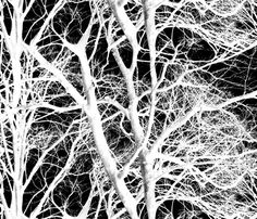 The Tree Lace ~ White and Black fabric by peacoquettedesigns on Spoonflower - custom fabric