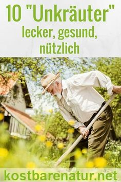 Unabhängig Und Frei Leben Mit Wenig Geld Autark Werden | Tomorrow ... Ideen Fur Zimmerpflanzen Winterdepression Bekampfen