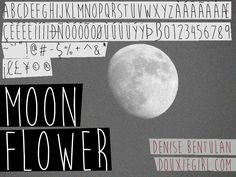 "Moon Flower Font | dafont.com the word ""Photography"" second choice"