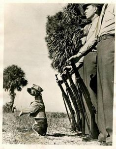 "A dog's life in the U. Marine Corps isn't all soup bones and dog biscuits. It means going through drill and standing attention. Here is private ""Screwball"" bull terrier mascot of the Marine detachment at Dunedin, FLA., taking command. Military Working Dogs, Military Dogs, Police Dogs, Military Service, War Dogs, Vintage Dog, Service Dogs, Pitbull Terrier, Training Your Dog"