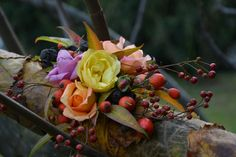 dal mio giardino foglie e fiori