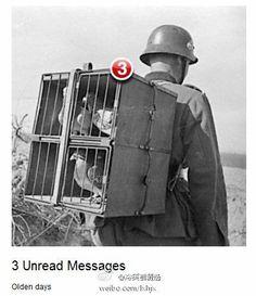 Mailbox beta