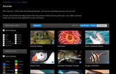 national aquarium: http://www.aqua.org/explore/animals#location=.l01&sort=sortAnimal