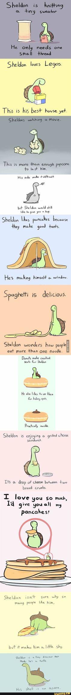 Cute Funny Animals, Cute Baby Animals, Funny Cute, Haha Funny, Funny Jokes, Hilarious, Sheldon The Tiny Dinosaur, Dinosaur Dinosaur, Dinosaur Pictures