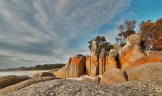Bay of Fires, NE Coast Tasmania, Australia. See http://www.pinterest.com/visitaustralia for more
