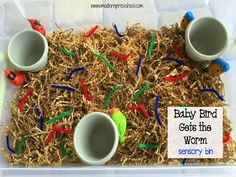 Feed the Bird Sensory Bin with shredded brown paper, pipe cleaners, plastic birds, and clothepins