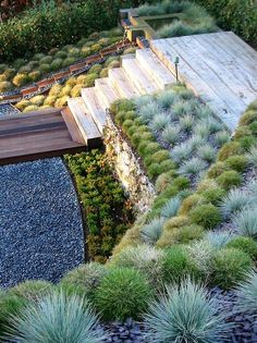 Nice idea for a backyard slope area with a deck and water feautre. Interesting use of color and texture.