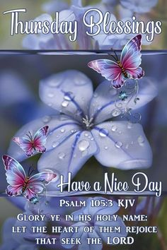 Have A Nice Day Thursday Blessings religious blessings thursday psalm good morning thursday thursday blessings Thursday Morning Quotes, Happy Wednesday Quotes, Morning Prayer Quotes, Good Morning Prayer, Good Morning Messages, Good Morning Greetings, Morning Verses, Happy Tuesday, Monday Blessings
