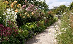 The rose garden at Haddon Hall was in need of extreme editing. So out went the stiff hybrid teas and in came delicate roses and perennials, writes Lia Leendertz