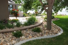Concrete Edging with large stone filler. Hardscape, Front Yard Landscaping, Landscape Curbing, Lawn And Garden, Concrete Edging, Outdoor Gardens, Landscaping With Rocks, Concrete Curbing, Landscape Edging