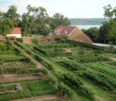Mt. Vernon - I always think of the beautiful smell of boxwood in the morning