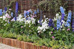 8 borders, practical and charming. Garden Online, Boarders, Dream Garden, Blue Flowers, Shrubs, Outdoor Gardens, Stuff To Do, Backyard, Pretty