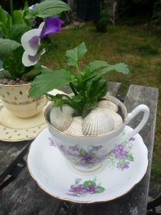 Tea Cup Planters by English Tea2, via Flickr