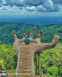 @Regrann from @travellerschannel -  Sitting on a wooden palm Follow @travellerschannel for more  by @trisnoarybudi - #regrann