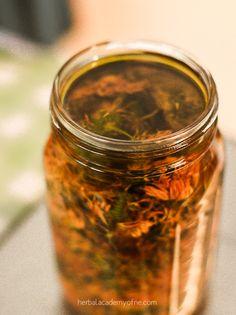 Learn herbal basics!