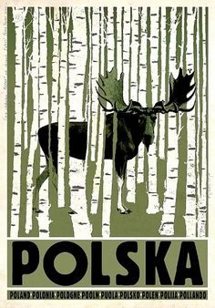 POLSKA Poland Polen Pologne Pooln Puola Polonia Polsko - Tourist Promotion poster Poster from new series of posters promoting Poland Birchwood, Elk, Moose on poster Check also other posters from PLAKAT-POLSKA series Original Polish poster Old Poster, Retro Poster, Poster Ads, Poster Prints, Polish Posters, Plakat Design, Simple Poster, Graphisches Design, Tourism Poster