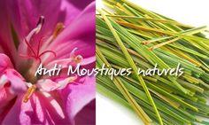 collier fleur d 39 ylang ylang ylangylang ylang ylang pinterest huiles essentielles. Black Bedroom Furniture Sets. Home Design Ideas