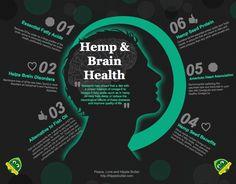 Hemp and Brain Health Info-Graphic