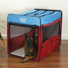Large Mesh Windows on Four Sides for Maximum Ventilation Dog Crate in Red/Blue, Extra- Large ** See this awesome image  : Dog kennels
