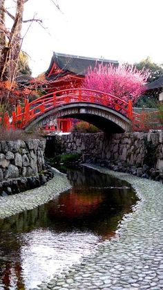Kyoto Japan - Visit Travel Den for amazing city breaks Japanese Landscape, Japanese Architecture, Shimogamo Shrine, Beautiful World, Beautiful Places, Japon Tokyo, Kairo, Belle Villa, Visit Japan