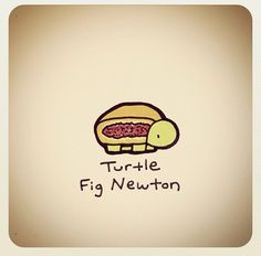 Turtle Fig Newton